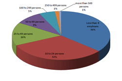 ISVs number of employees